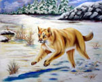 wildlife painting, wildlife portrait, cougar, cougar painting